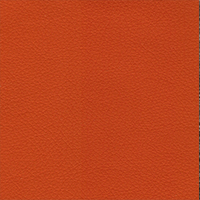 Orange PPM Leather [+€86.00]