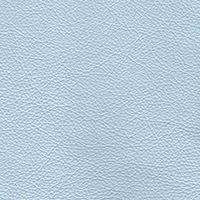 Sky Blue PPM Leather [+€86.00]
