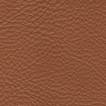 Caramel Genuine Leather [+€172.00]