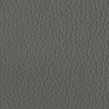 Grey PPM Leather