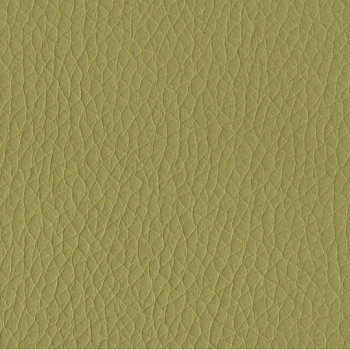 Green PPM Leather [+€60.20]