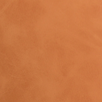 Caramel PPM Leather